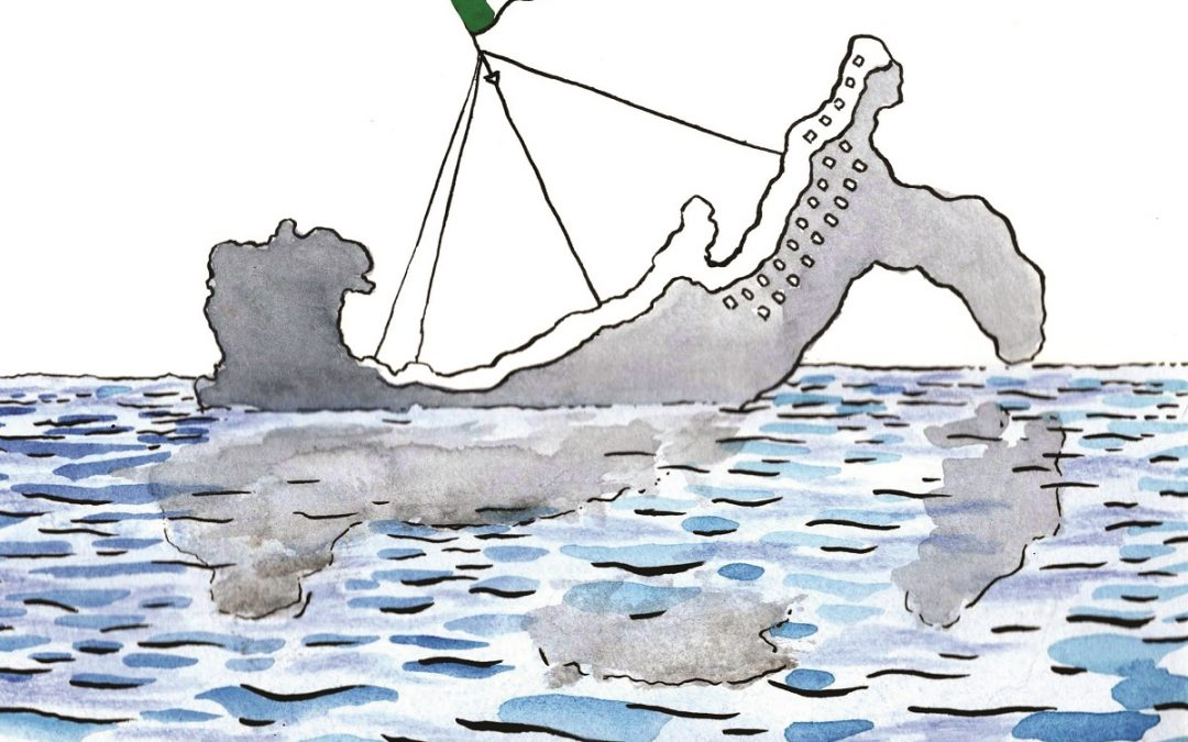 Illustrazione di Roberto Melis