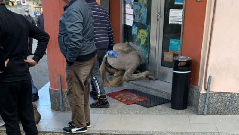 Disarcionato dal proprio cavallo nel centro di San Calogero, giovane in gravi condizioni