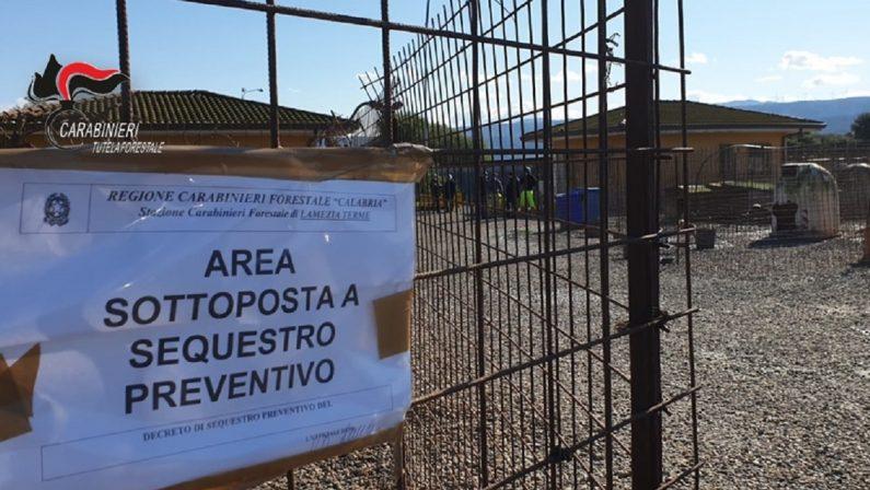 Lamezia Terme, sigilli al canile comunale: sequestrati quasi 300 animali