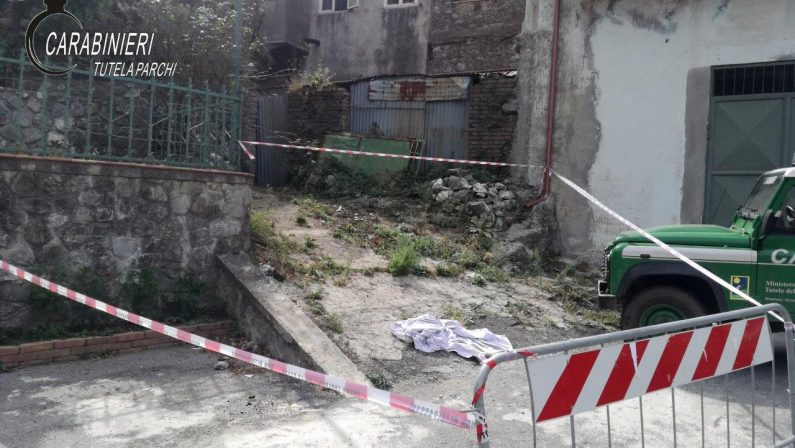 Due cani avvelenati in provincia di Catanzaro, i carabinieri individuano il presunto responsabile