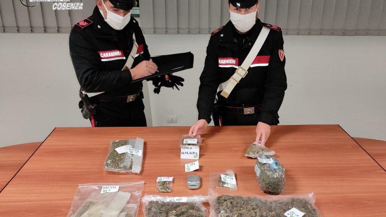 Arrestato con l'accusa di detenzione e spaccio di stupefacenti un uomo nel Cosentino