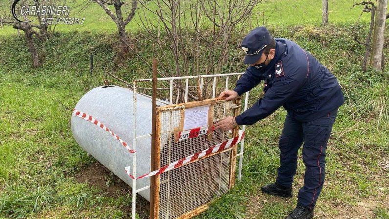 Scoperta una gabbia per catturare animali selvatici in un terreno nel Cosentino