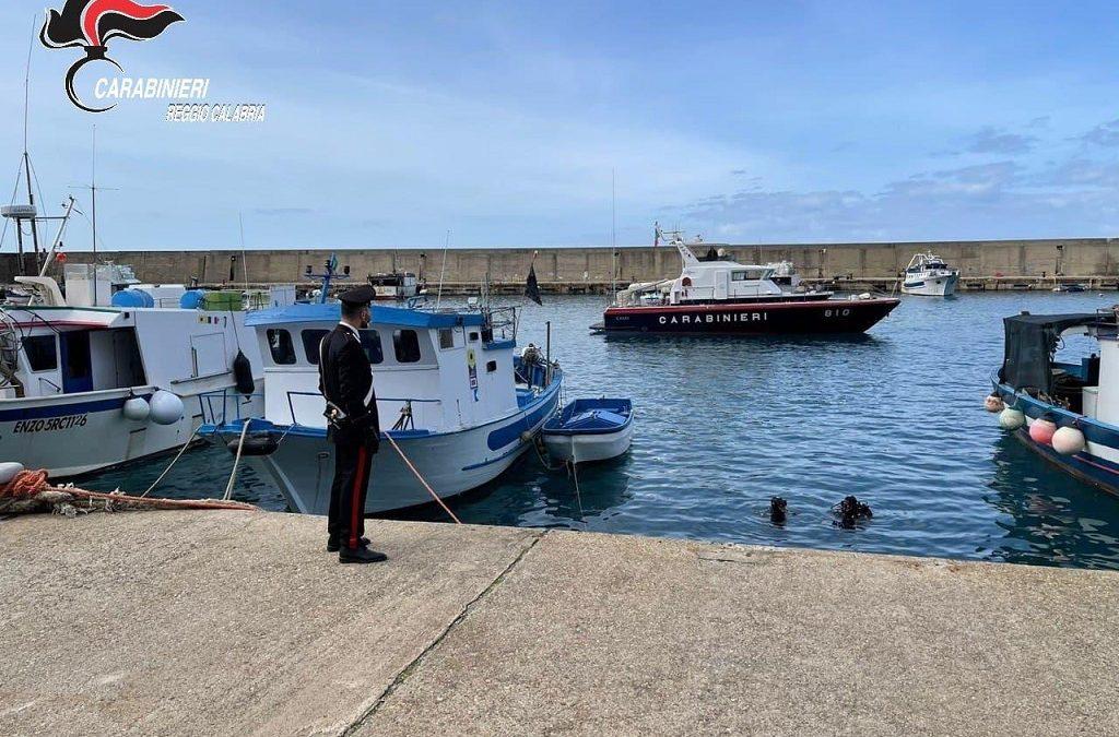 I controlli dei carabinieri nel porto