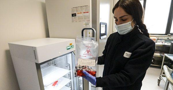 Coronavirus in Italia, 23.641 nuovi casi nelle ultime 24 ore e 307 decessi