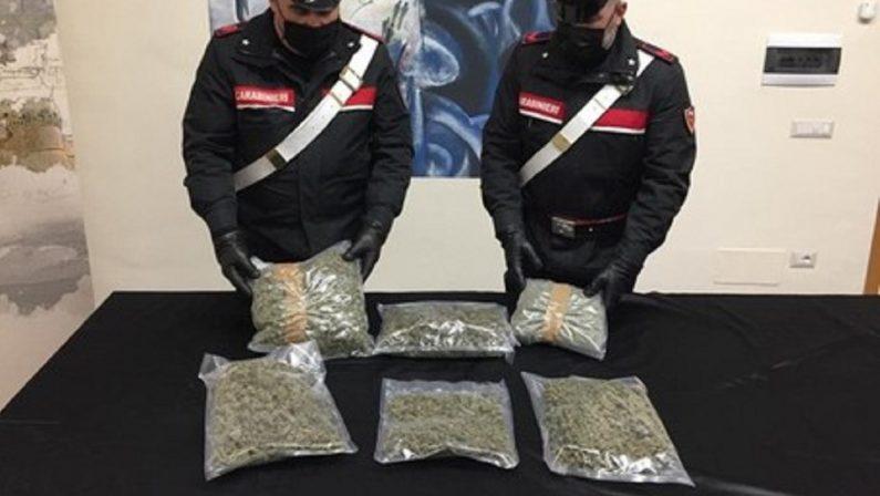 Crotone, sequestrati oltre 2 chili e mezzo di marijuana