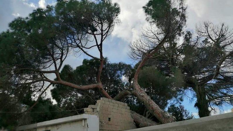 Maltempo, danni per il vento forte a Tropea. Torna la neve in Sila