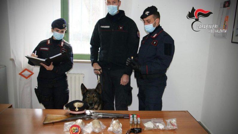"""Arrestato un uomo nel Vibonese per possesso di armi clandestine e di """"bombe carta"""""""