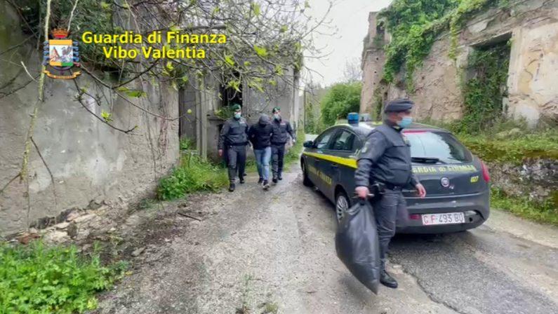 Due chili di marijuana nascosti sotto il tetto: un arresto nel Vibonese