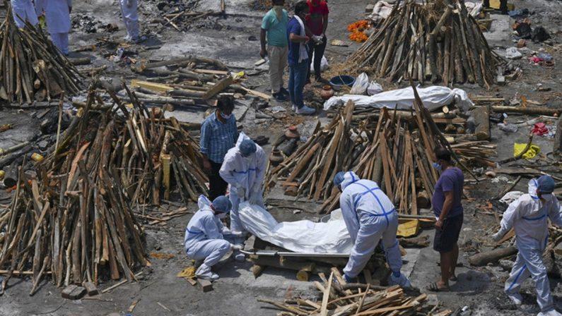 Covid, l'India epicentro globale della pandemia: finita la legna per bruciare i cadaveri