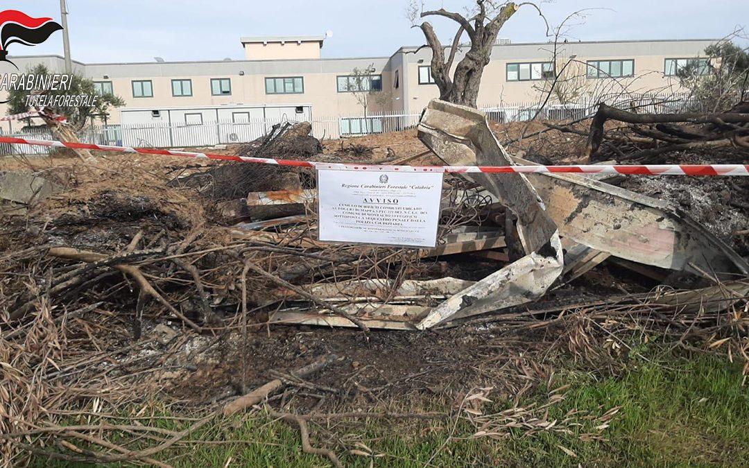 Incendiano cumuli di rifiuti e il fumo invade un call center, denunciate tre persone nel Cosentino