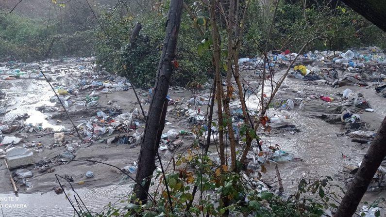 Massa di rifiuti nel fiume, un disastro ecologico nel Vibonese