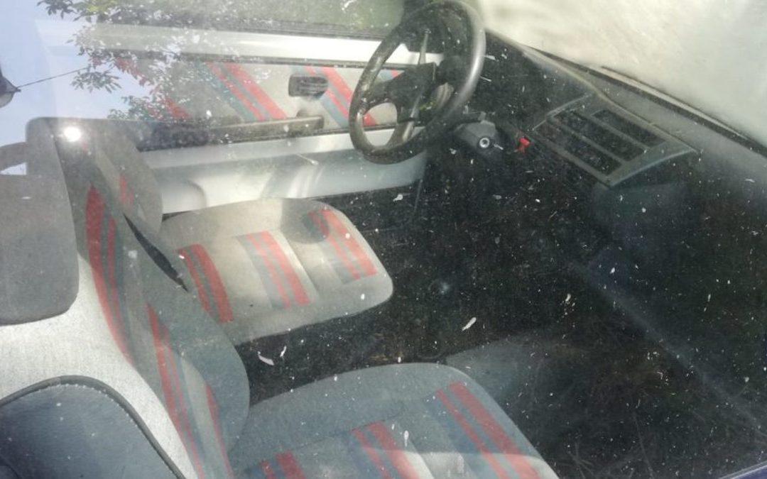 La Fiat 500 di Lisa Gabriele