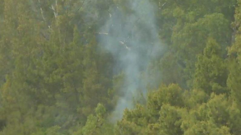 Vasto incendio in un bosco di Irsina, difficili le operazioni di spegnimento