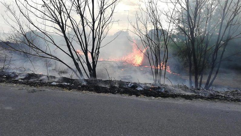 Il comune di Motta San Giovanni:  «L'incendio ha riguardato un terreno privato e non l'area archeologica»