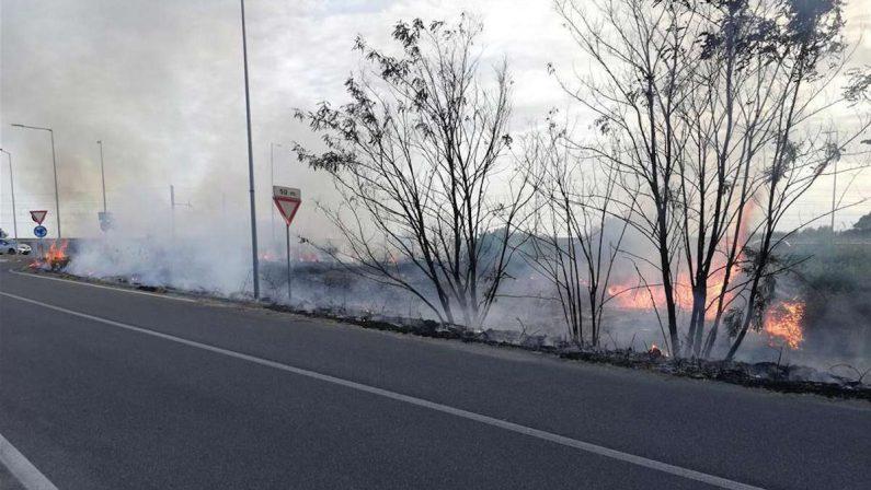 Motta San Giovanni, in fiamme il sito archeologico di Lazzaro - FOTO