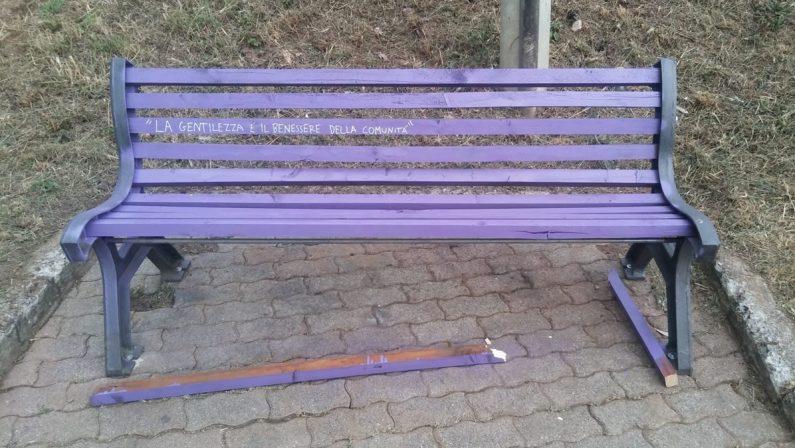 Rende, la panchina viola della gentilezza presa di mira dai vandali