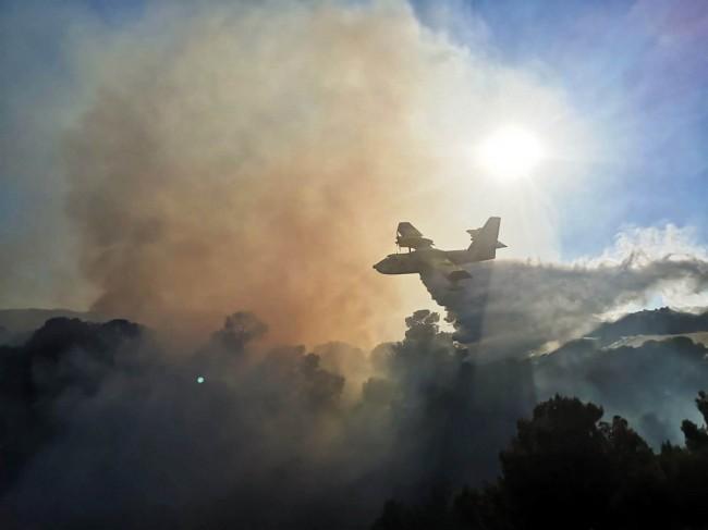 Vasto incendio nell'Alto Jonio cosentino, canadair e vigili del fuoco in azione ad Amendolara