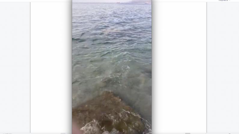 Vibo, mare sporco a Bivona: le segnalazioni dei bagnanti