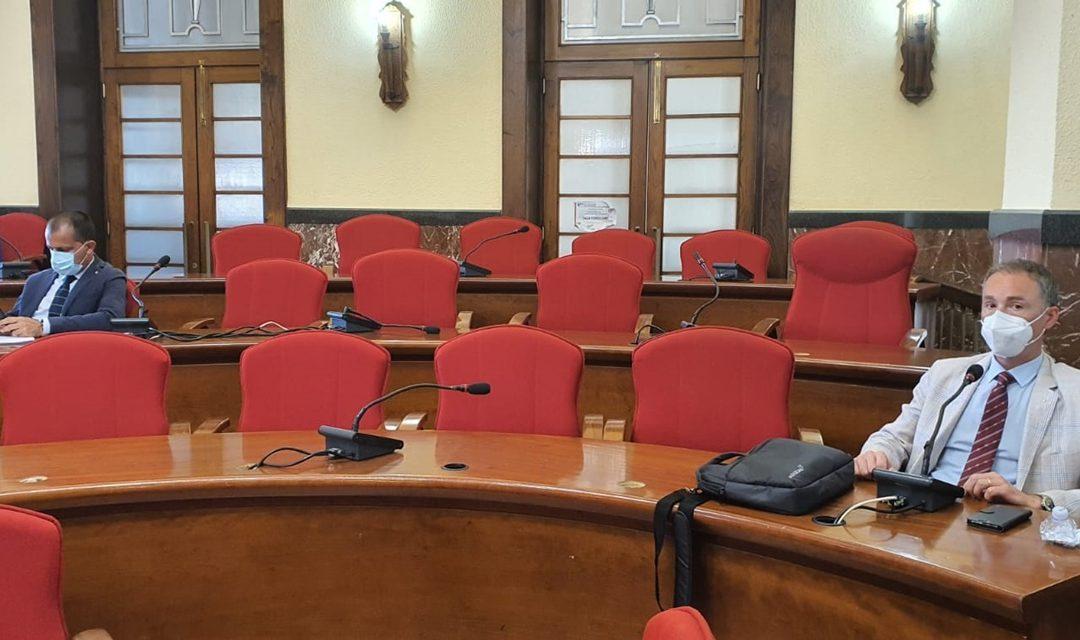 I banchi dell'opposizione lasciati semivuoti in Consiglio comunale a Vibo