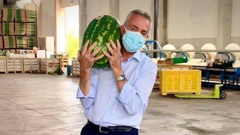 La foto - L'anguria gigante dell'assessore all'Agricoltura Gianluca Gallo