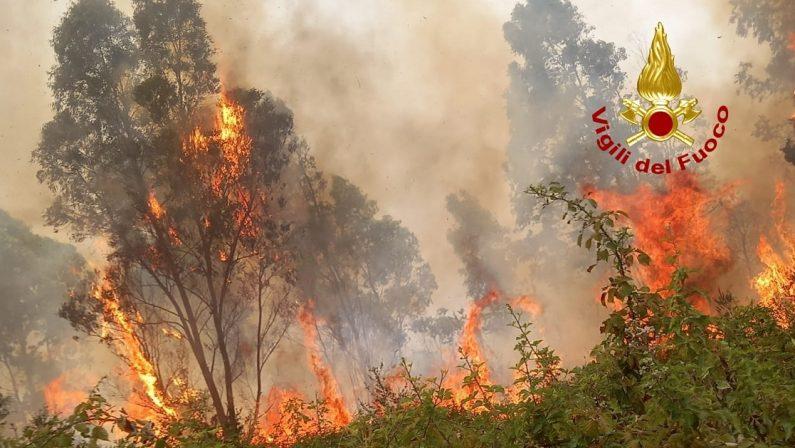 Vasto incendio nel Lametino, minacciata case e disagi sulla statale 18