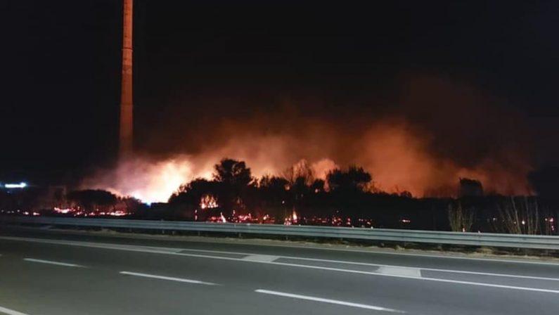 Incendio nel Reggino, in fiamme l'area per far nidificare i fenicotteri