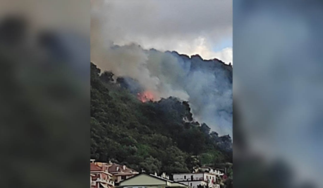 L'incendio a Vibo Valentia