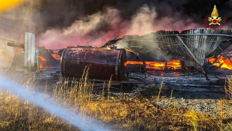 Spaventoso incendio in un vivaio di Bisignano, nei capannoni gasolio e materiale infiammabile