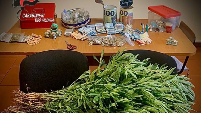 Marijuana e contanti nascosti in campagna, un arresto nel Vibonese