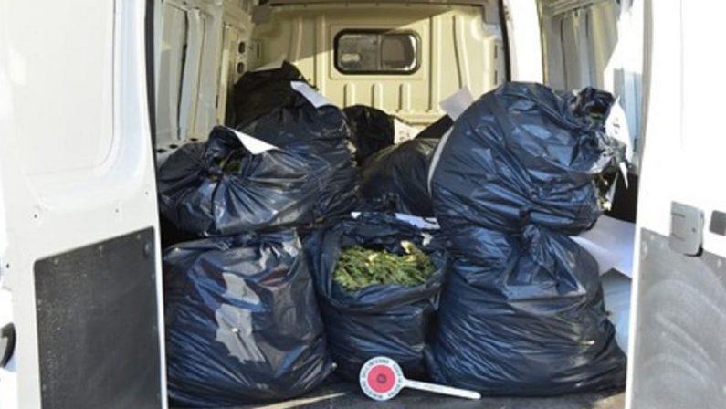 Crotone, oltre un quintale di marijuana in casa: quattro arresti
