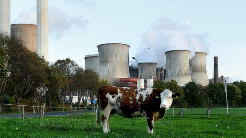 La dura realtà della scarsità di materie prime dell'energia