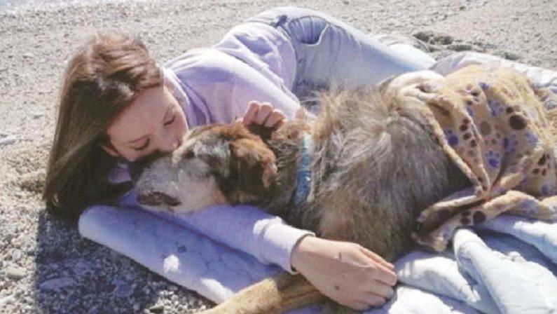 Debora, la ragazza catanzarese protettrice dei cani premiata in Liguria