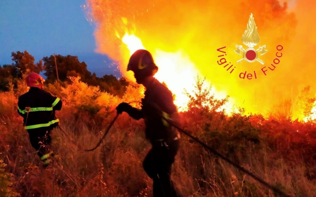Un incendio in Calabria