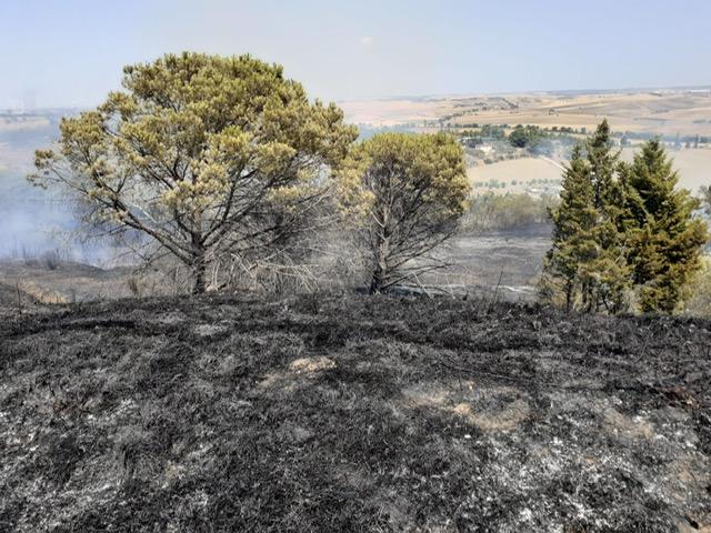Matera, fiamme a Serra Rifusa