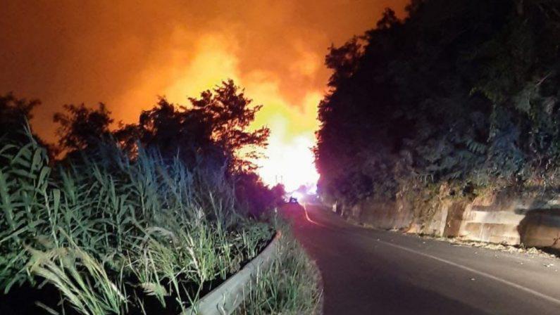 La Calabria continua a bruciare, il Wwf: «Del Parco dell'Aspromonte rischia di restare solo cenere»