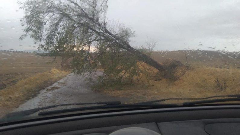 La tempesta d'agosto fa danni nel Materano