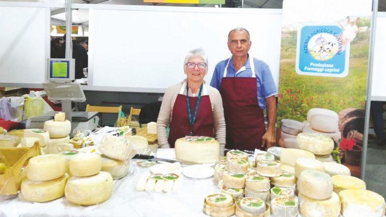 Emigrata calabrese porta ad Amantea le capre svizzere e trionfa con i suoi formaggi