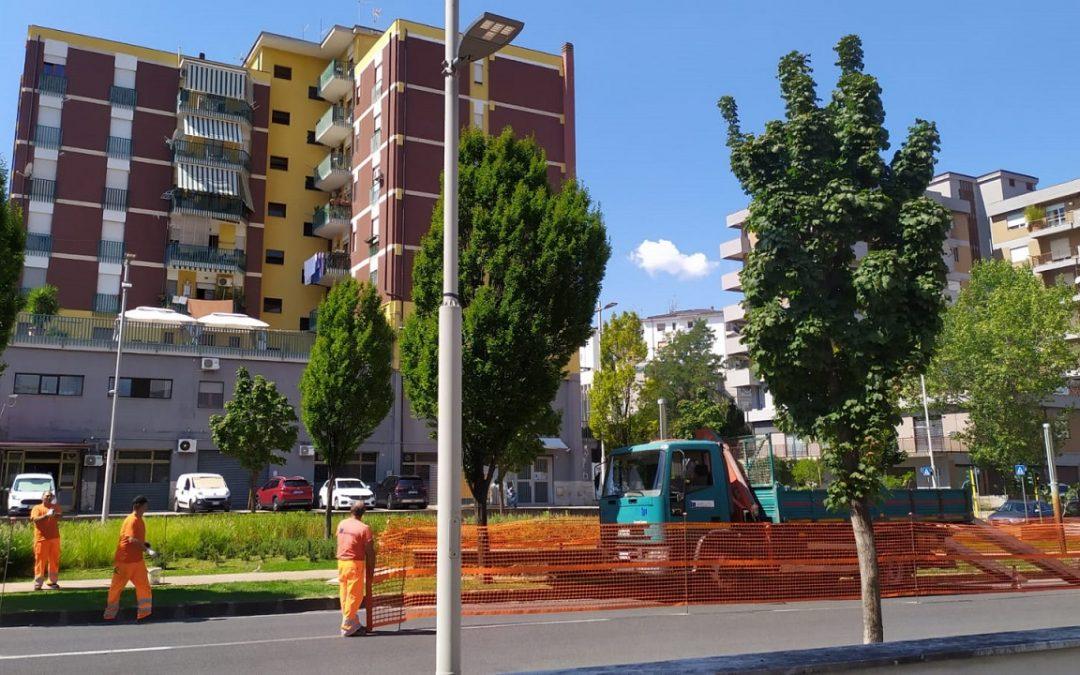 La riapertura del cantiere su viale Mancini