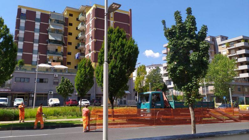 Cosenza, a tre settimane dal voto riparte il cantiere su viale Mancini