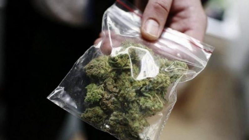 Corigliano, madre trova marijuana nella stanza del figlio e lo fa arrestare