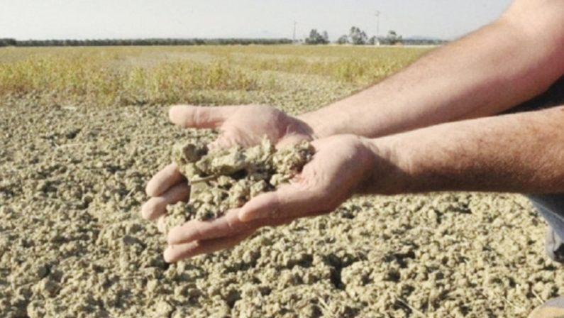 Sud a un passo dalla desertificazione: «In cima alla lista europea del rischio»
