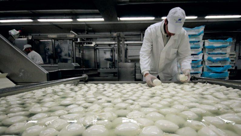 """Minibond per sostenere l'agroalimentare del Sud: al via """"Bond food Mezzogiorno"""""""