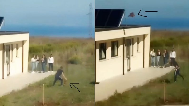 Vibo, gallina scaraventata sul tetto di una scuola: l'indignazione dell'Enpa